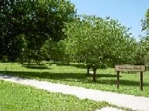 Carlson Memorial Park