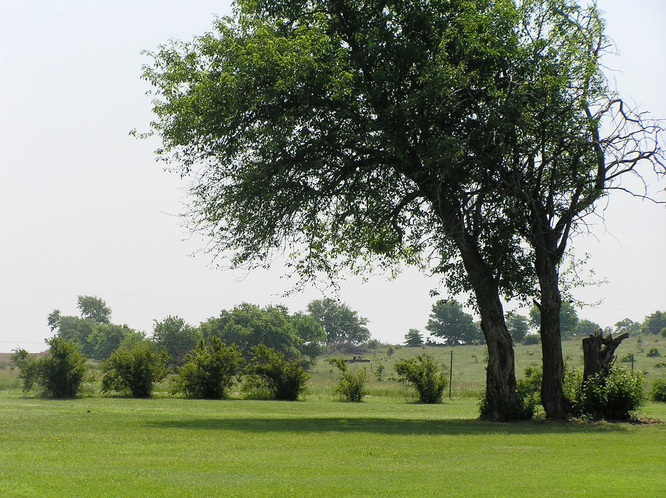 Lindsborg Golf View 2