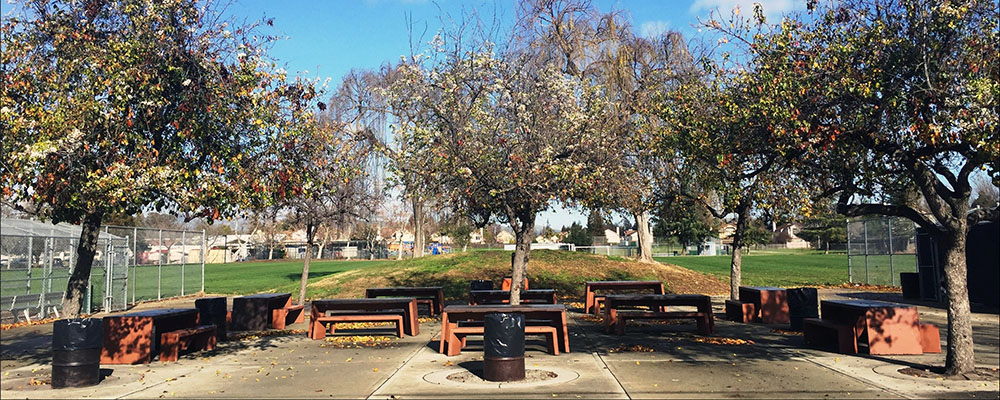 Picnic Area Rentals at LARPD