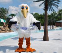 Pelican Pete for website