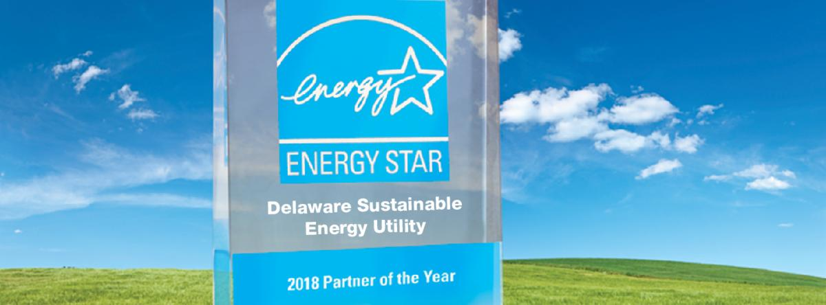 DESEU wins ENERGY STAR Partner of the Year Award